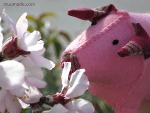 Pig-flowers_2928