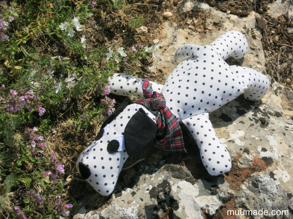 Huggable Doggy - lying flat on a rock next to herbs